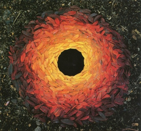 leaves_byandygoldsworthy